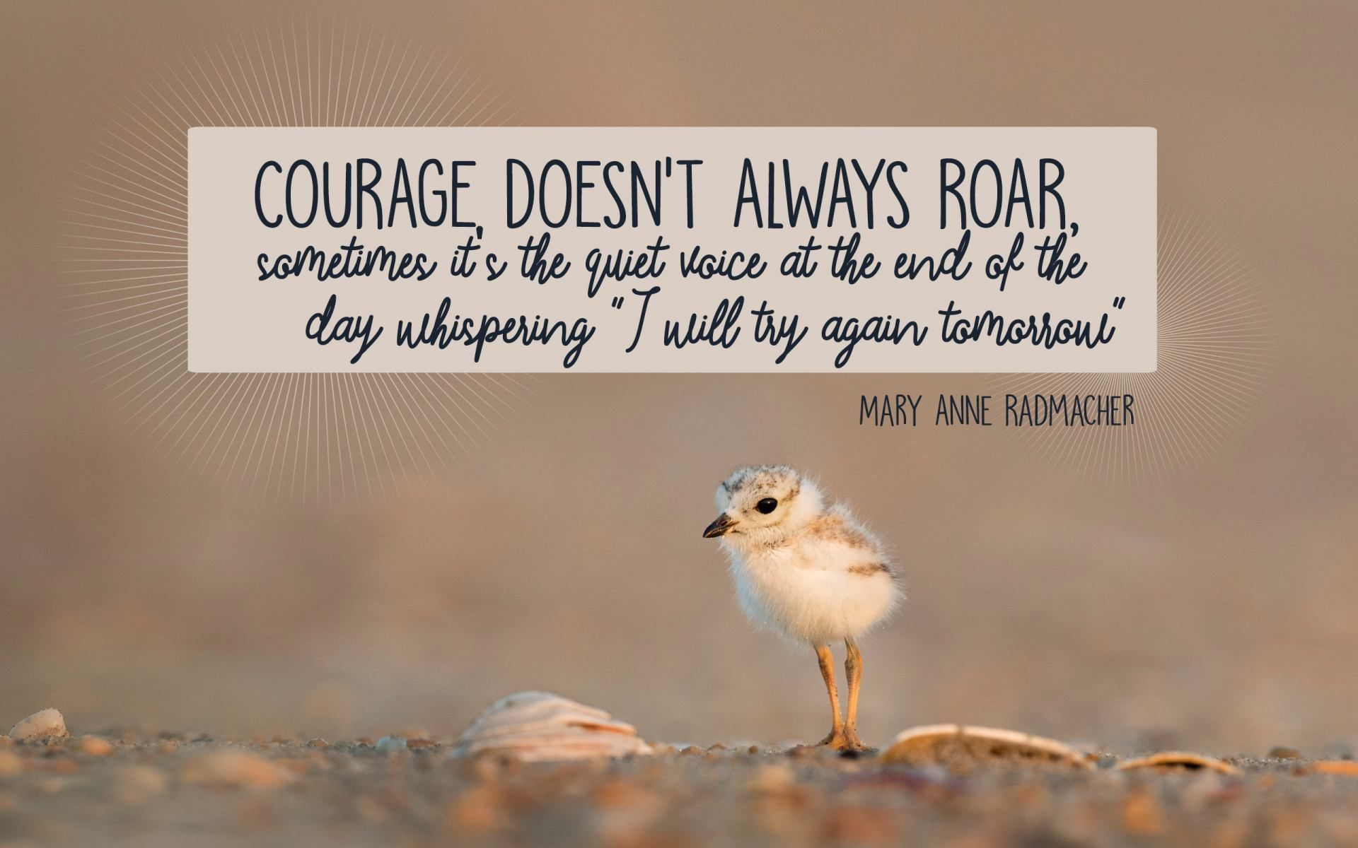 Courage Doesnt Always Roar Sometimes Its The Quiet Voice At The