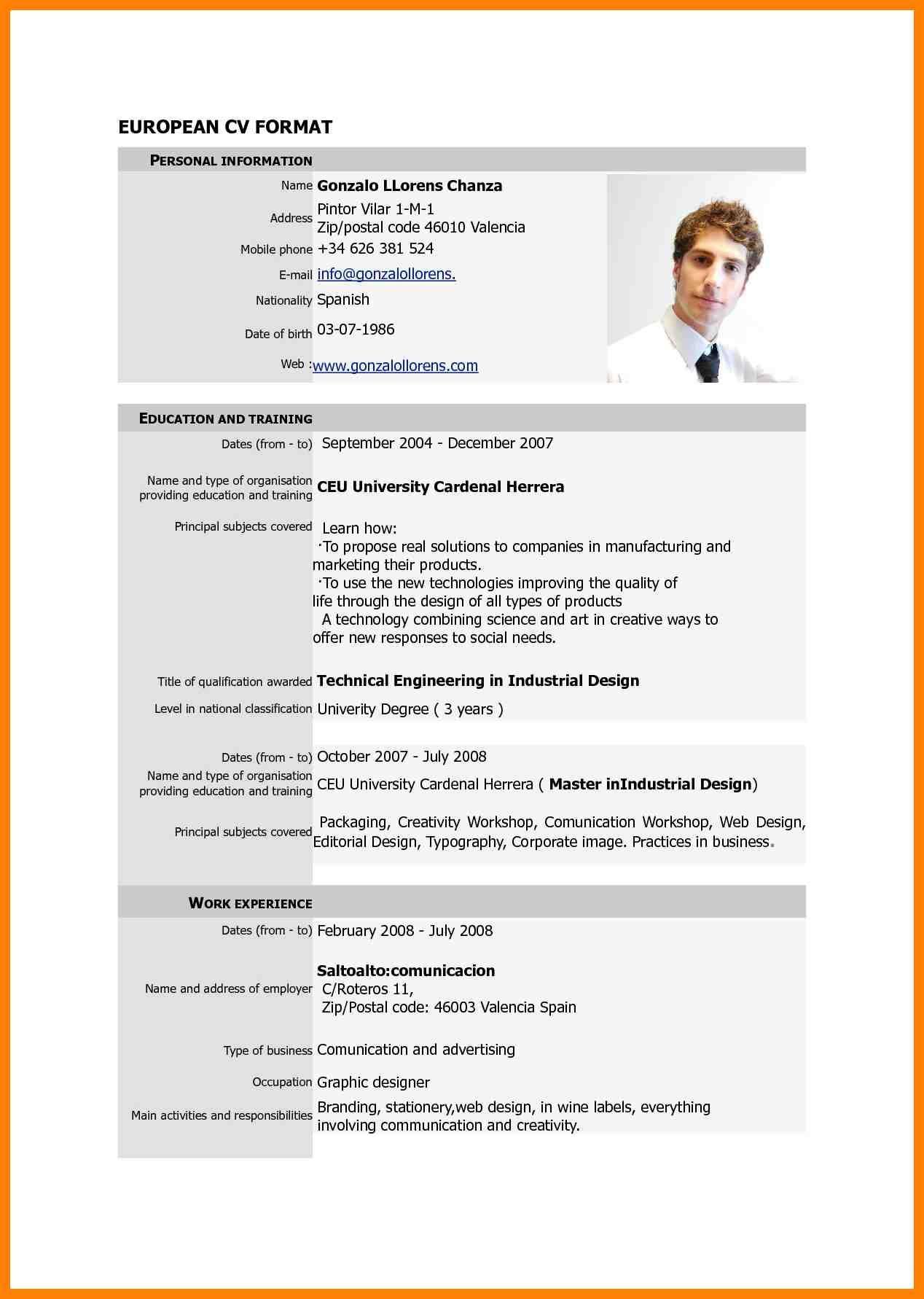 curriculum vitae example pdf