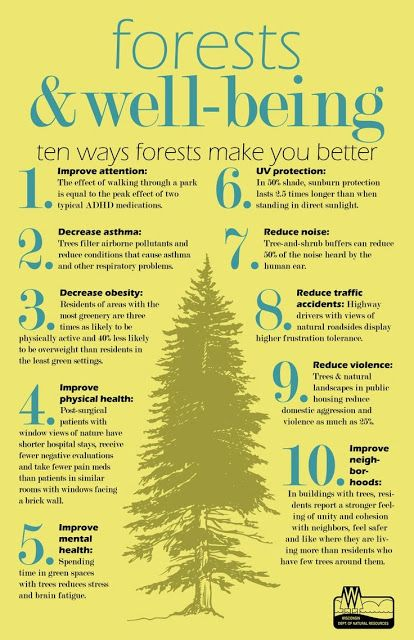 10 Ways Forests Make You Better Infographic Forest Bathing