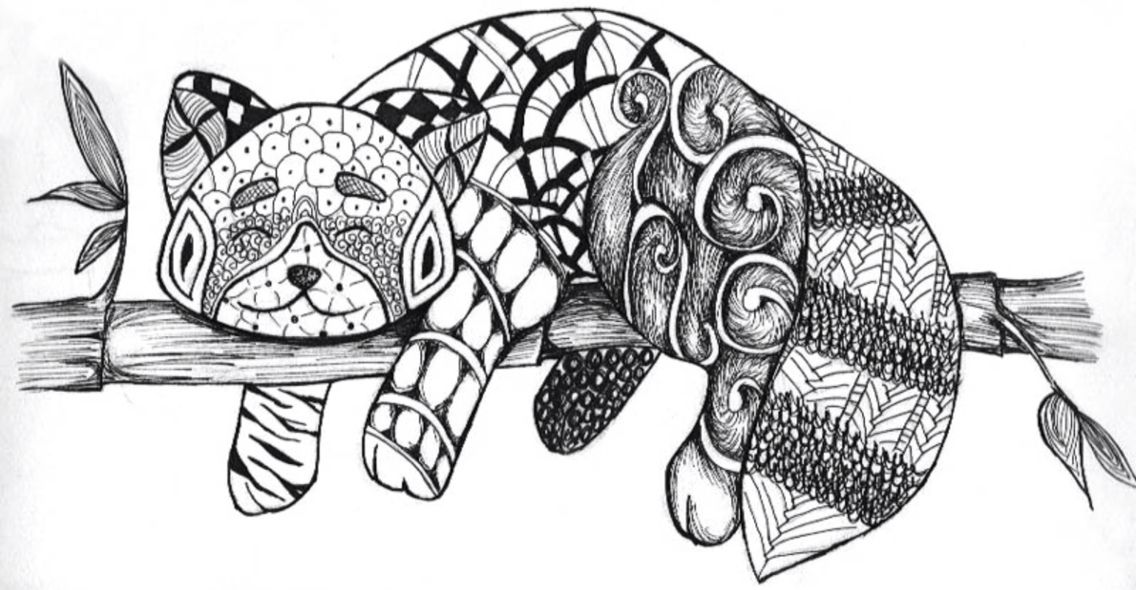 Red panda Animal coloring pages, Zentangle animals
