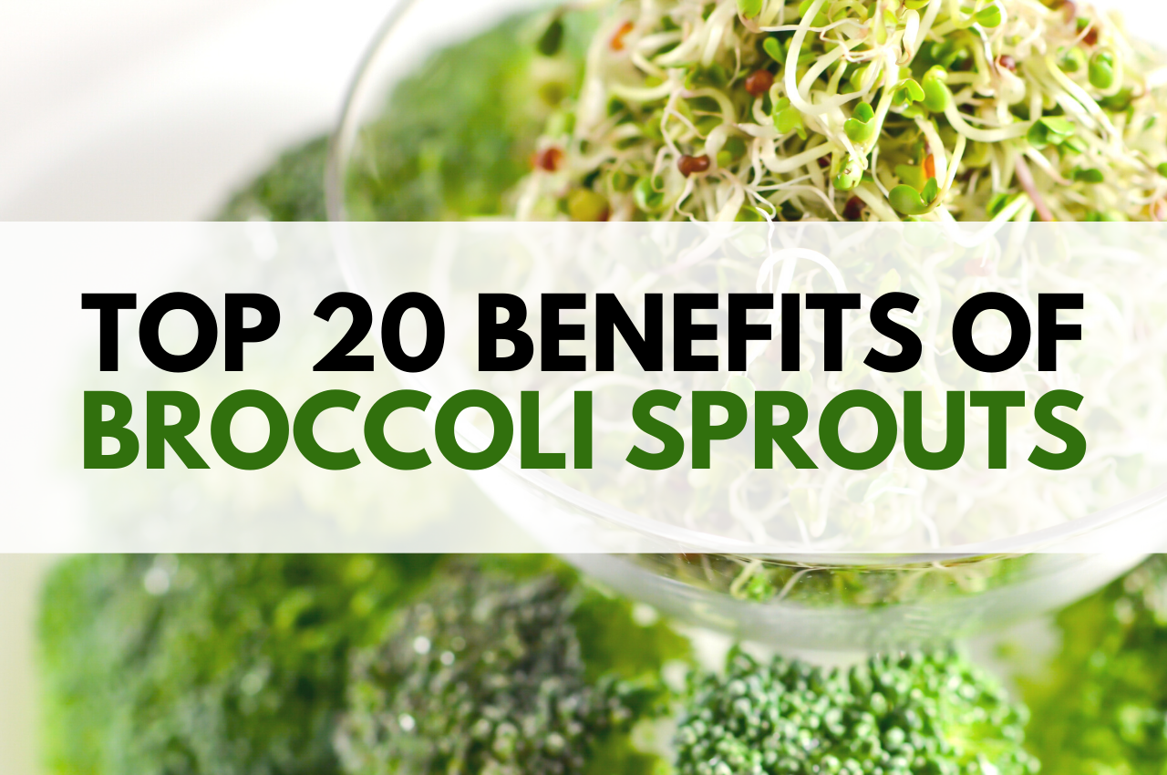 Top 20 Benefits Of Broccoli Sprouts Myersdetox Com Broccoli Benefits Broccoli Sprouts Broccoli Health Benefits