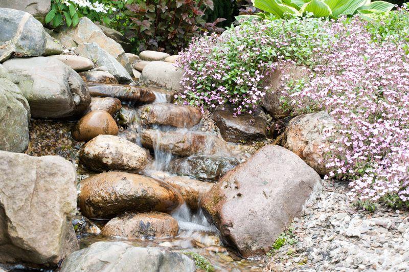 Rotstuinen hebben een eigen karakter met een bijzondere sfeer u vindt er los groeiende - Amenager een rotstuin ...
