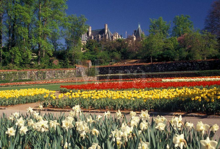 e613ede6d8e4959e7e542466c621b36e - Best Time To Visit Biltmore Gardens