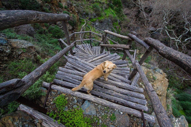 Richtis Gorge, Exo Mouliana, Greece — by MidnightAngelPhoto