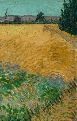 Wheatfield Vincent Van Gogh 1888 Arte Painting Paisajes