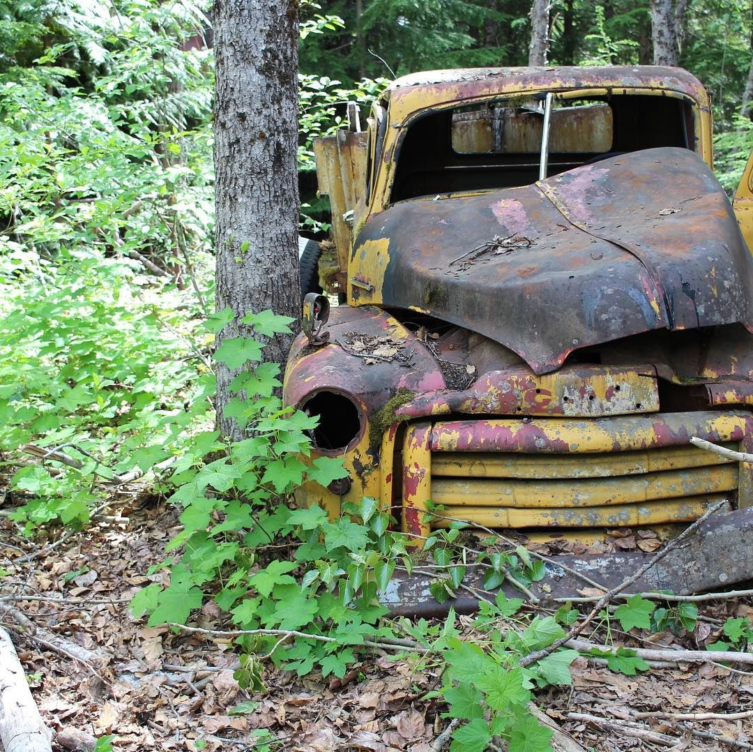 In 1926 The Barr Brothers Logging Company Bought Land From