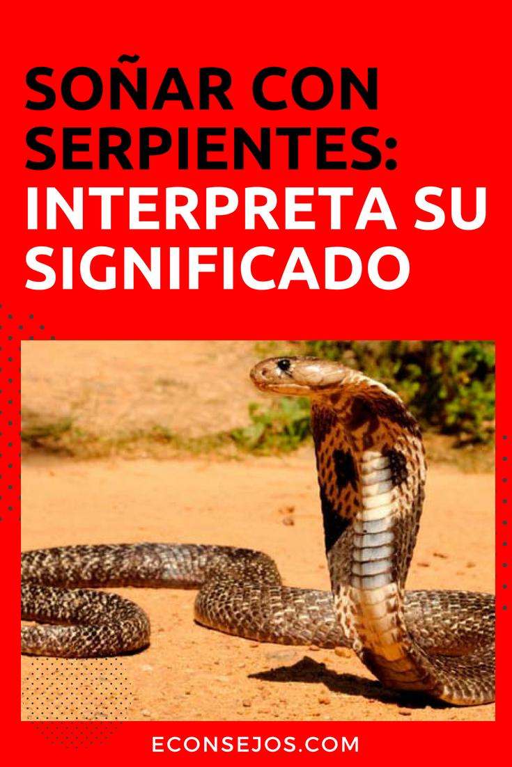 Soñar Con Serpientes Tiene Una Explicación Serpientes Soñar Con Una Serpiente Significado De Los Sueños