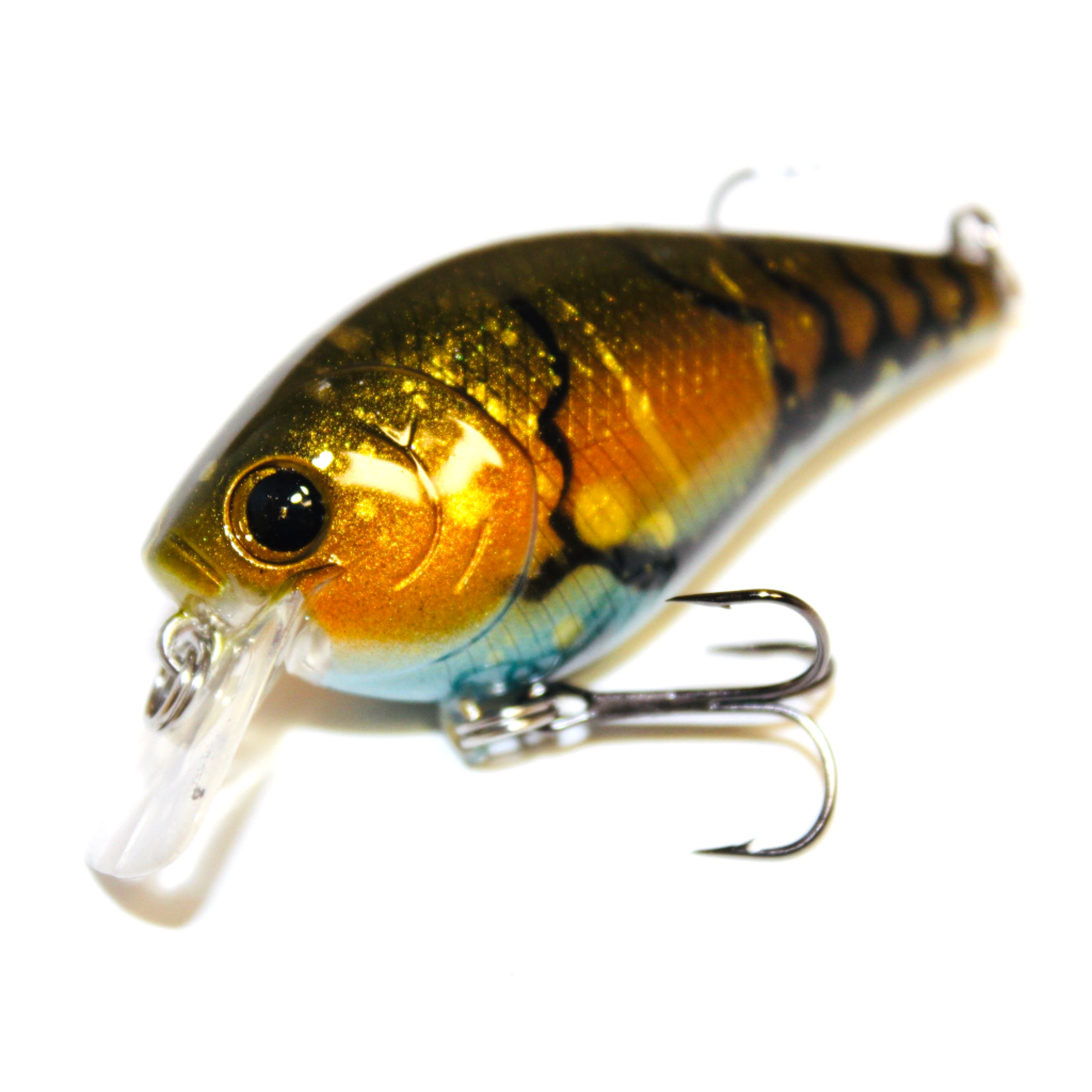 Pin By Rgoodeg On Painting Lures Fishing Lures Custom Fishing Lure Fishing Pictures