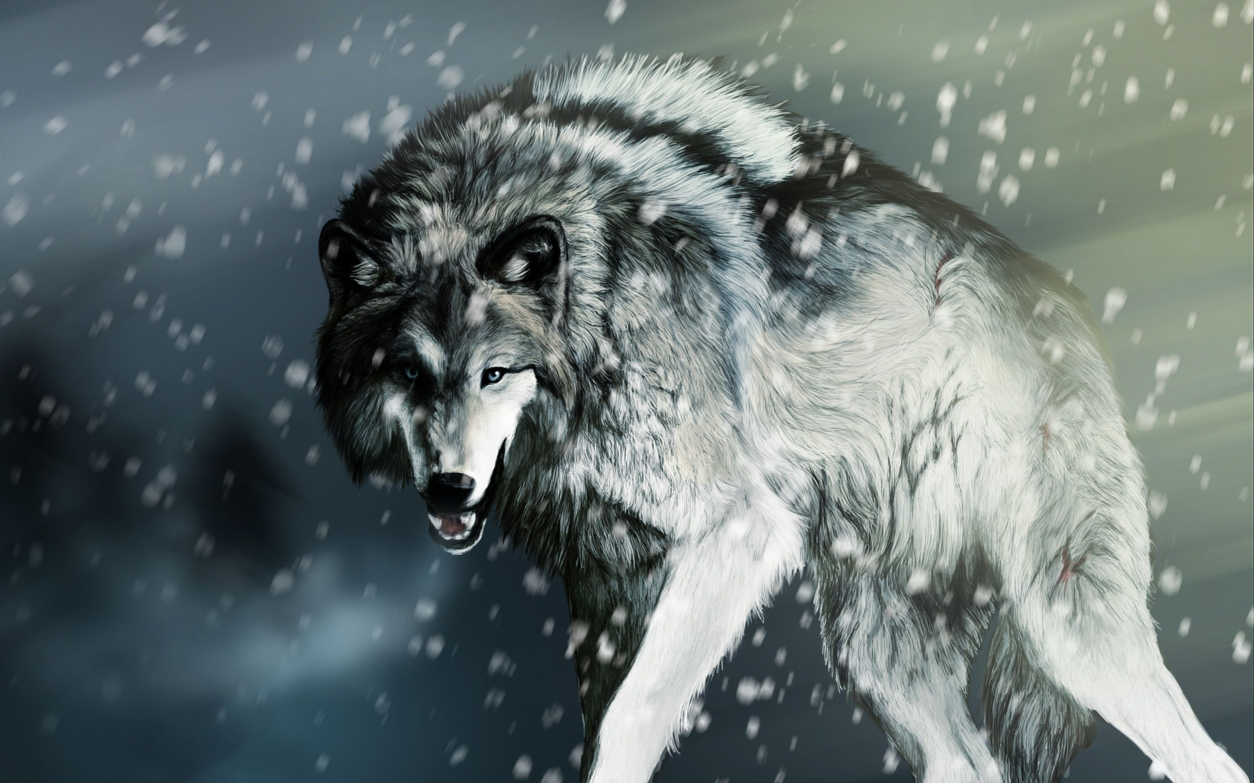 Must see Wallpaper Angry Gray Wolf - e6167732e782ed1e90fc09bc2fd08cf7  You Should Have_919338      .jpg