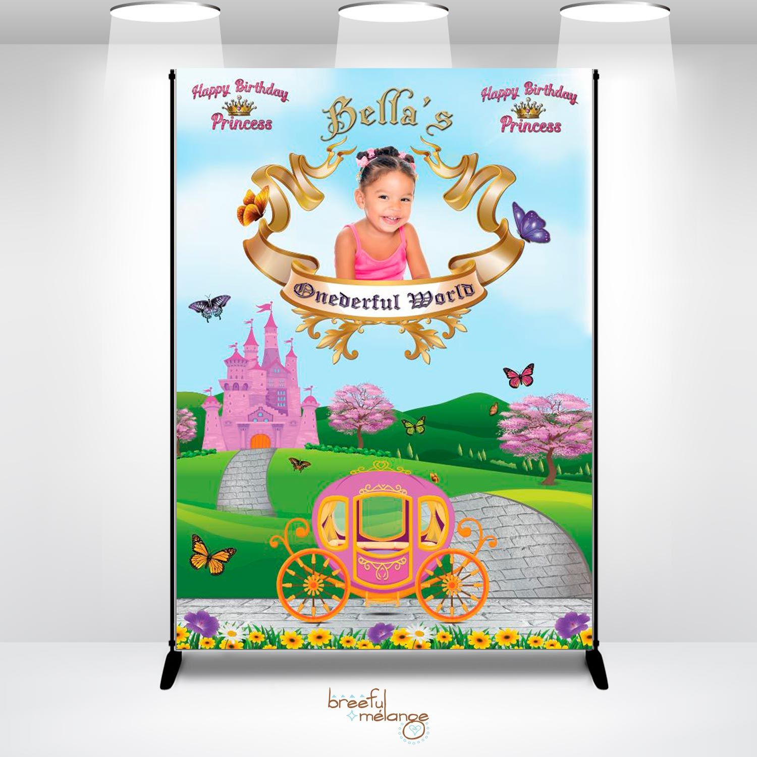 Onederful World Princess Birthday Backdrop. This Custom