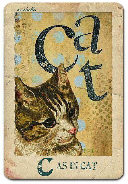 Vintage Flash Card - Cat