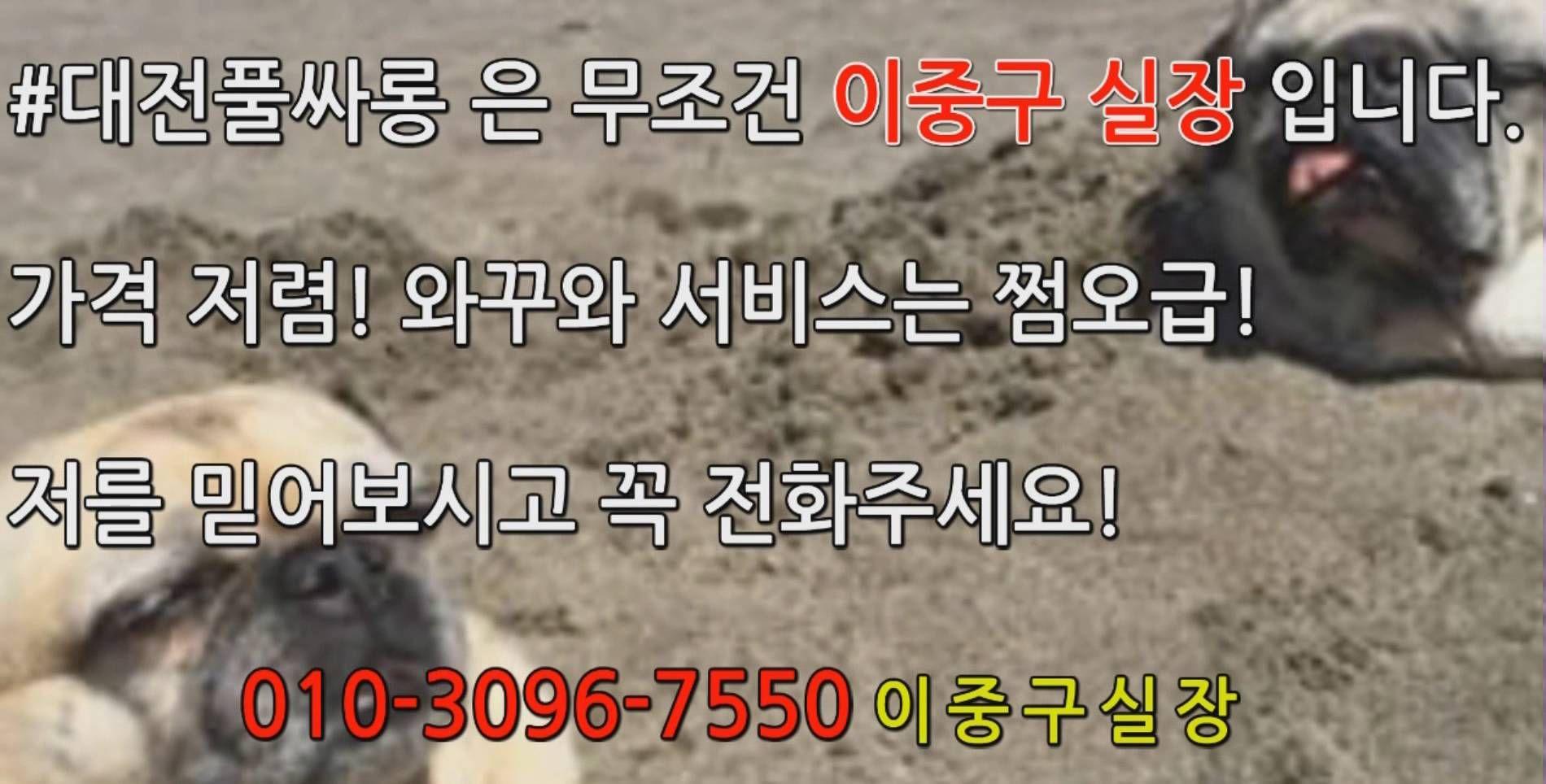 대전유성풀싸롱 O1O 3O96 755O 이중구실장 #대전풀싸롱 #유성풀싸롱