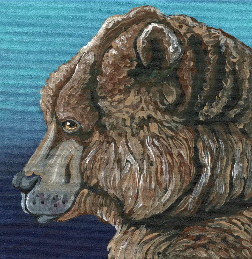 Wildlife Brown Bear Art Original Canvas Magnet  Painting -C. Smale #Miniature