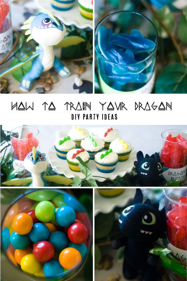 How To Train Your Dragon Party Ideas Dragons Birthday Party