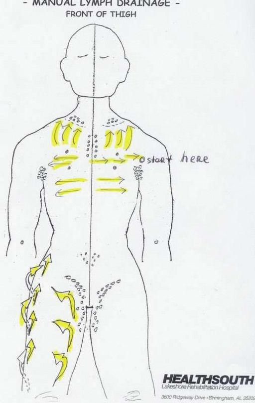 Neck Lymph Nodes Manual Guide