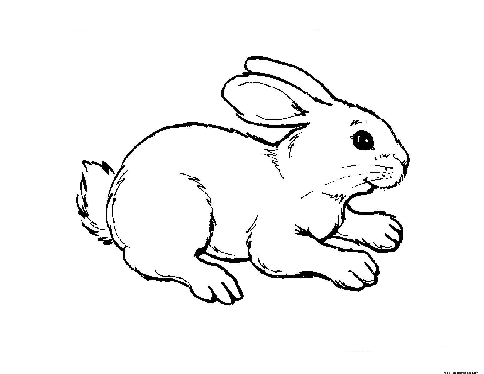 Printable Baby Animal Coloring Pages Bunny Rabbit Book For Kids