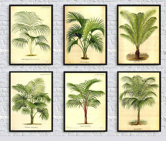 Palm tree print palm leaves print botanical illustration palm | Wall ...