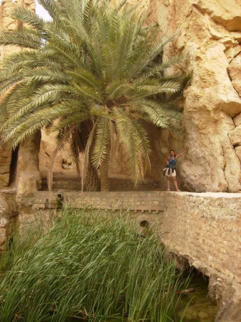 Oasis of Chebika, Deserto do Saara, Tunísia, África