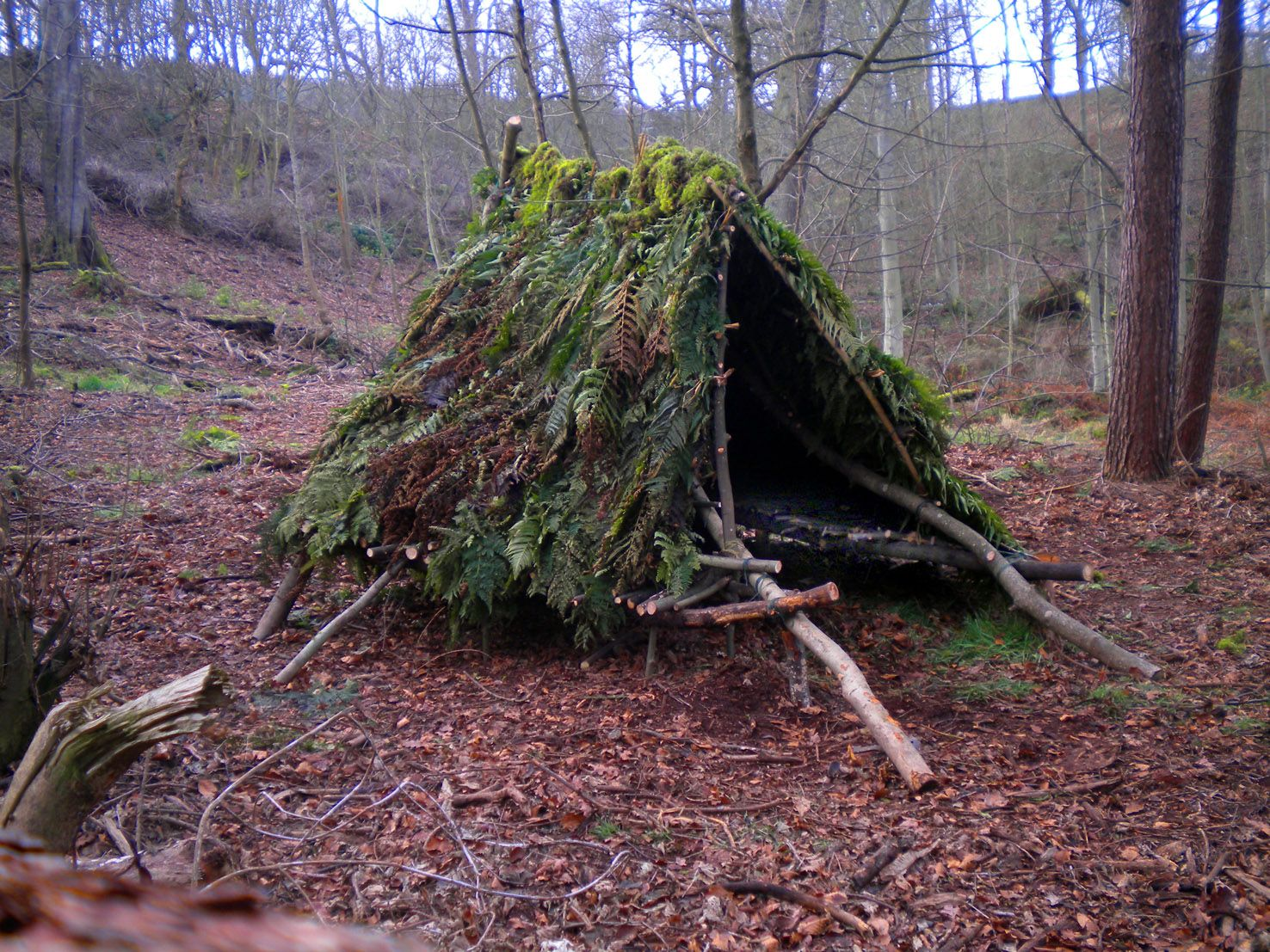 Wild Huts With Plans On Many Different Styles Of Shelters You Can Build Yourself