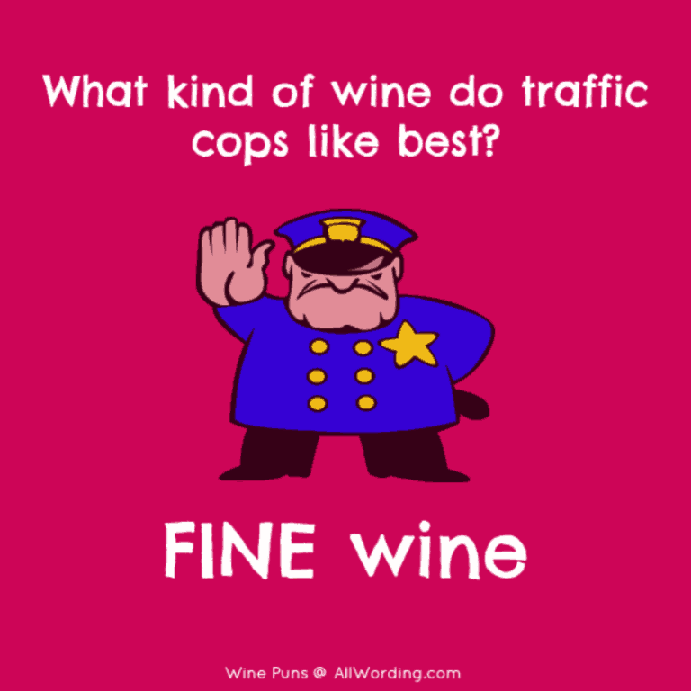 This List Of Wine Puns Is A Real Corker Wine Puns Wine Puns