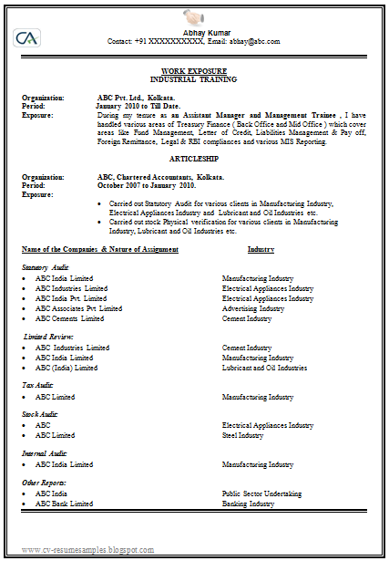 How To Prepare A Resume New How To Make Or Write A Cv Professional And Elegant 1  Career
