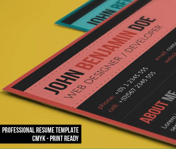 wwwcreative-resume-templates  Elegant Resume Resume - free eye catching resume templates
