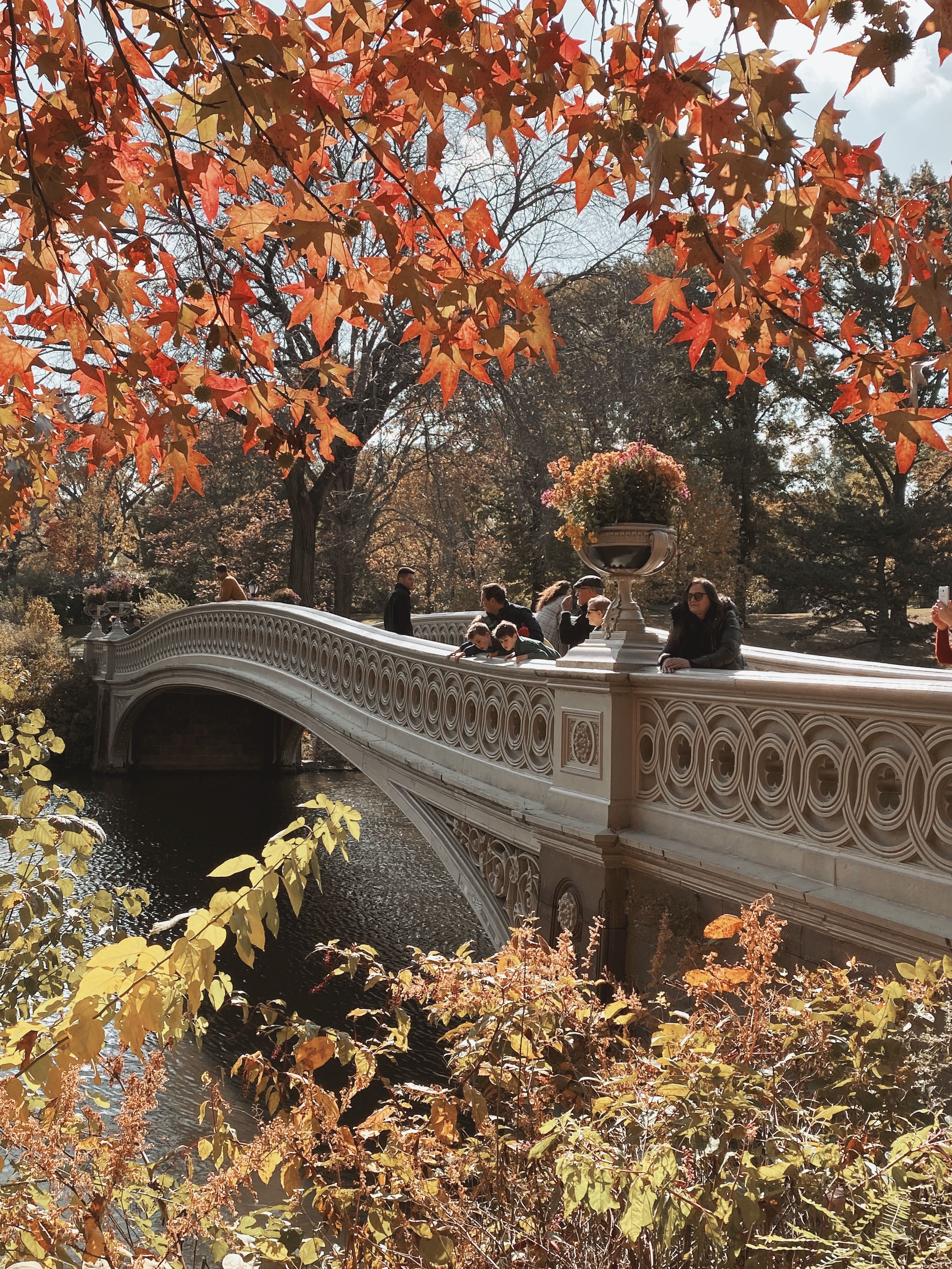 The Beauty In It All Autumn In New York New York Life New York City Travel