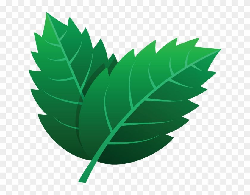 725 Leaves Icon Kartun Daun Hijau Clipart Is Best Quality And High Resolution Which Can Be Used Personally Or Non Commercially In 2021 Clip Art Daun Icon