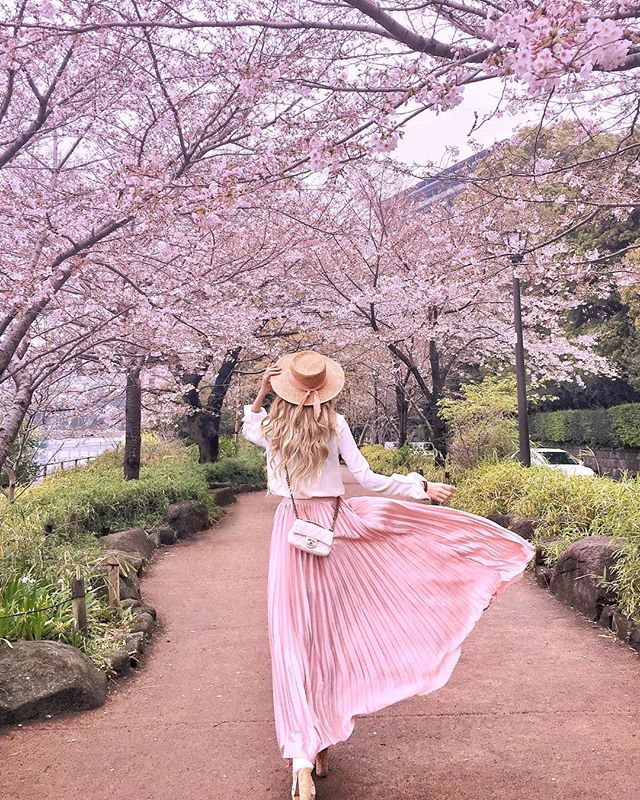 Lily Purplepinkp Foto Dan Video Instagram Spring Photoshoot Cherry Blossom Outfit Photography Poses