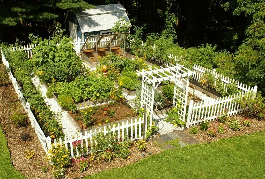 Garden Vegetable Garden With Cute Fence And Little House ...
