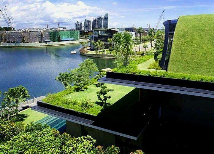 Urban roof garden