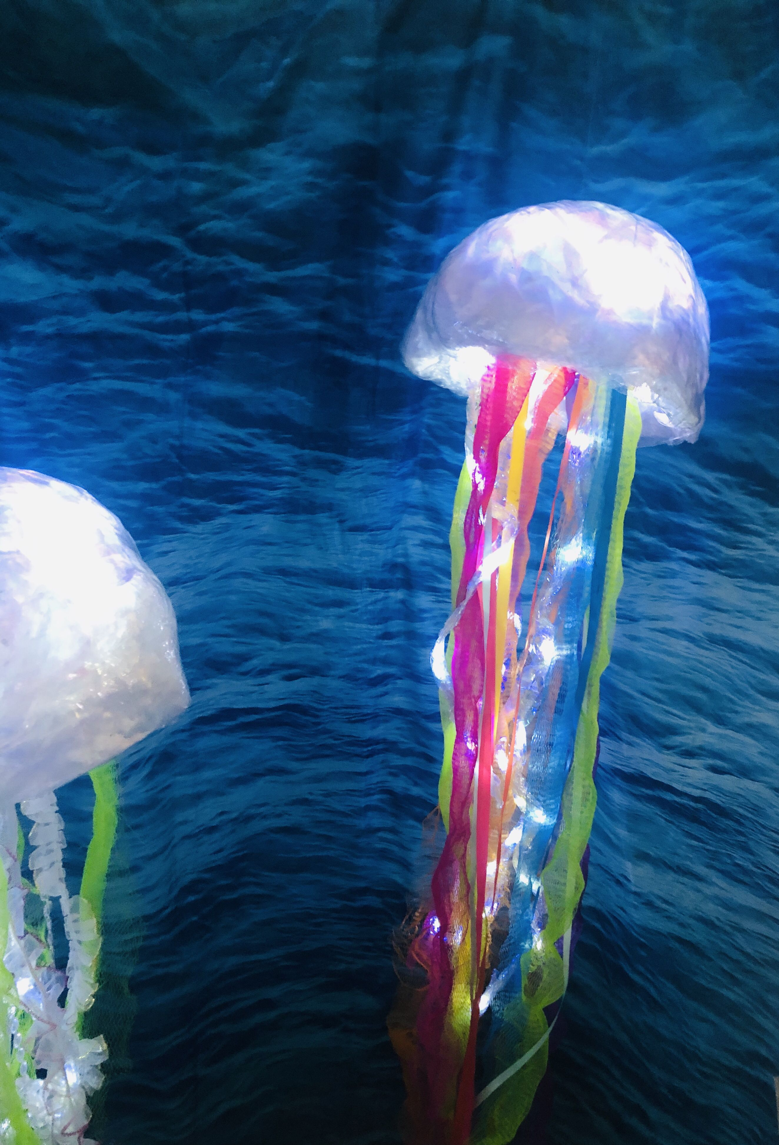Rainbow LED light up jellyfish for a mermaid party! Jellyfish lantern#jellyfish #lantern #led #light #mermaid #party #rainbow