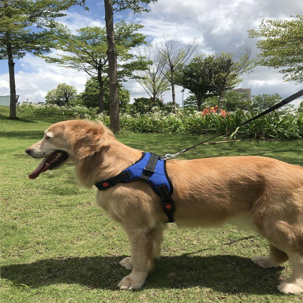 Dog Harness Kit Prevent Pulling Vest Life Service Heavy Duty Free