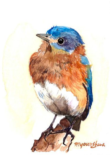 Art Print 5 X 7 Bluebird In Watercolor By Annalee377 On Etsy
