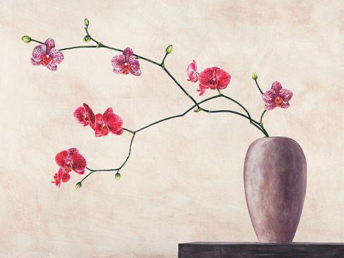 shin mills balance keilrahmen bild leinwand orchideen blumen feng shui zen orchideen. Black Bedroom Furniture Sets. Home Design Ideas
