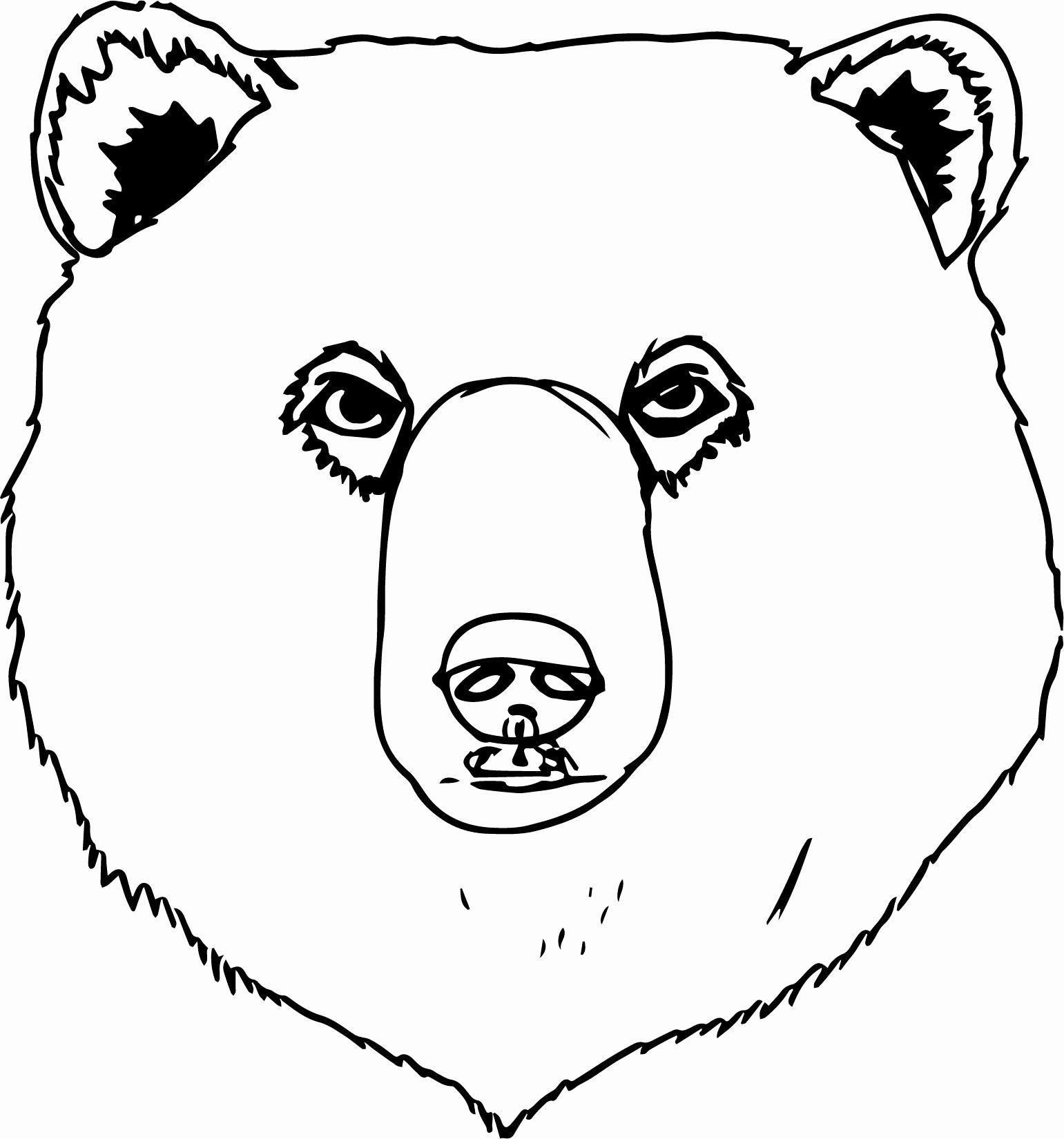 Black Bear Coloring Page Unique Black Bear Face Drawing At Getdrawings Bear Coloring Pages Bear Face Drawing Monster Coloring Pages