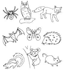 Sagome Di Animaletti Da Ritagliare Ricerca Google Animali Del