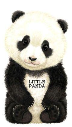 Little Panda Broad Book By L Rigo 7 99 Panda Pinterest Panda