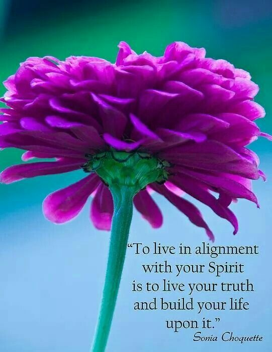 Live in your own truth | Spiritual awakening | Live your