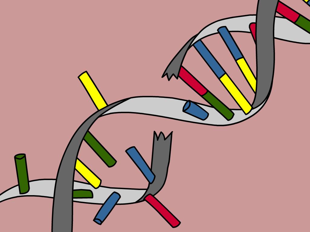 Read Fyi On Genetic Mutations