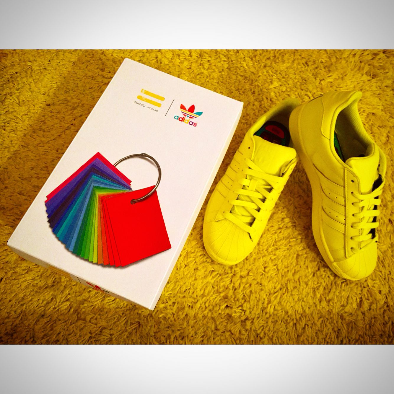 My Gift new Shoes Superstar By @pharrell By @adidasoriginals  #Pharrel_Whilliams #fashion #shoes #superstar #top #style #colors #yellow #FootLocker #socialnetwork #pinterest #tumblr #twitter #instagram #foursquare #pinterest #facebook #swarm #filter #followme #followers #love #photo #by @antonysax