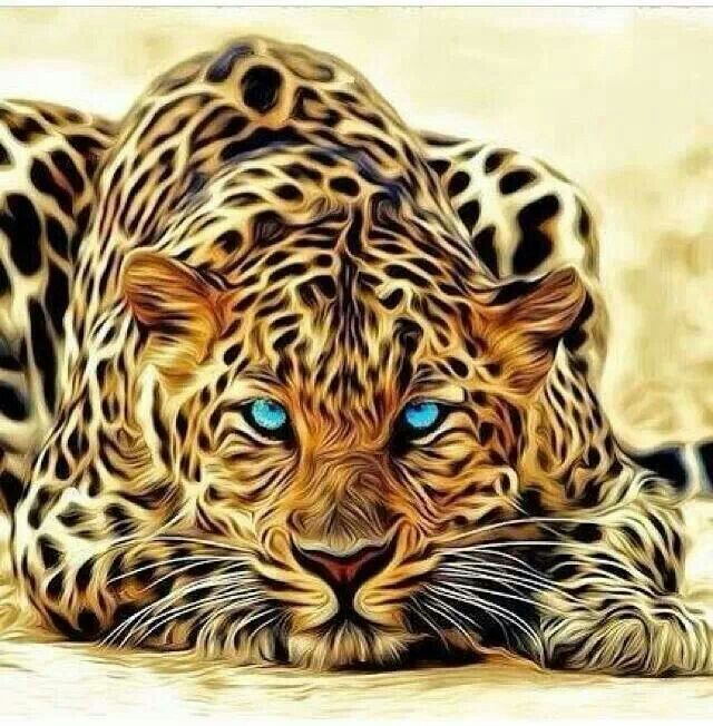 Gorgeous | Animals & Their Humans | Cat art, Animals