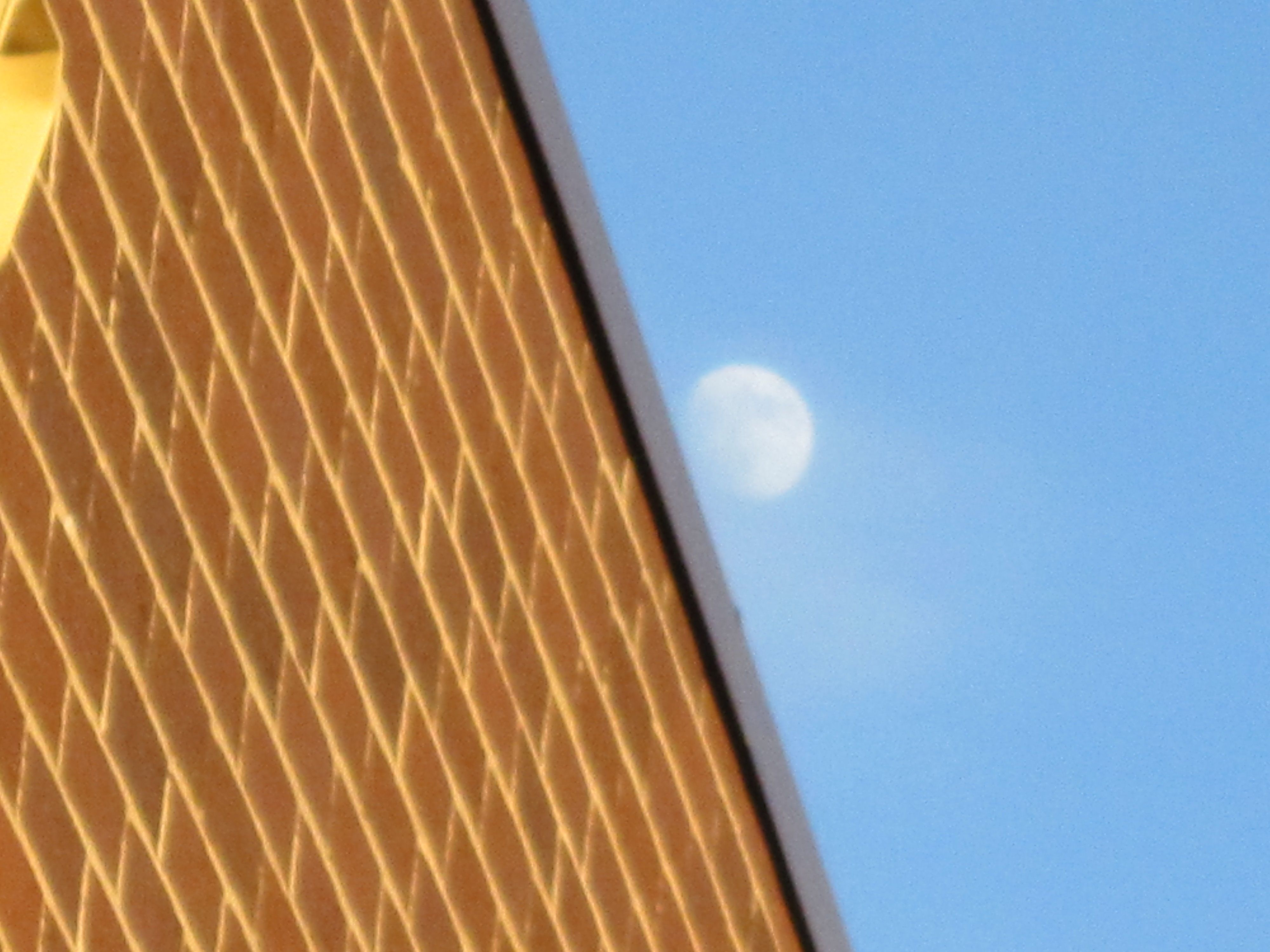 Moon along my school's wall!