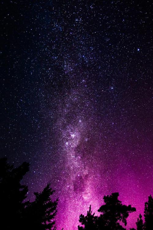 brazenbvll:  Nocturnal Sky: (©)