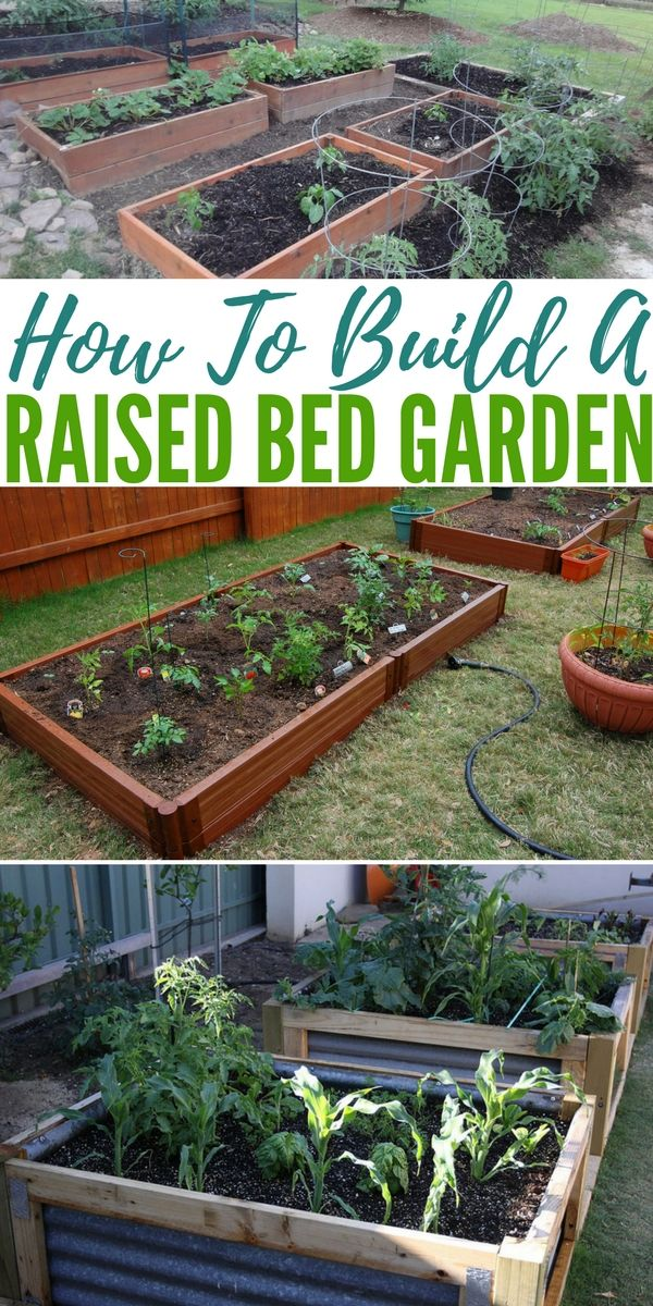 How To Build A Raised Bed Garden Garden Beds Raised Garden Beds