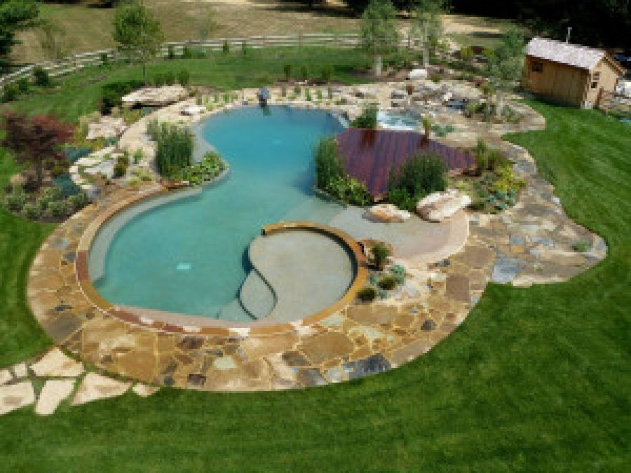 Considering A Natural Swimming Pool? Learn The Pros And Cons ...