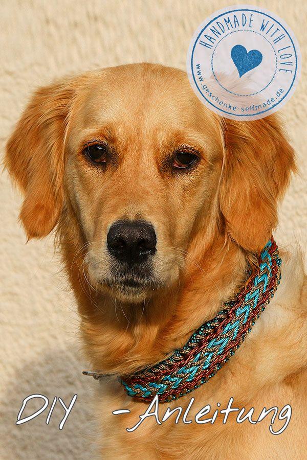 f00bb1e0f453eb DIY Anleitung Paracord Hunde-Halsband