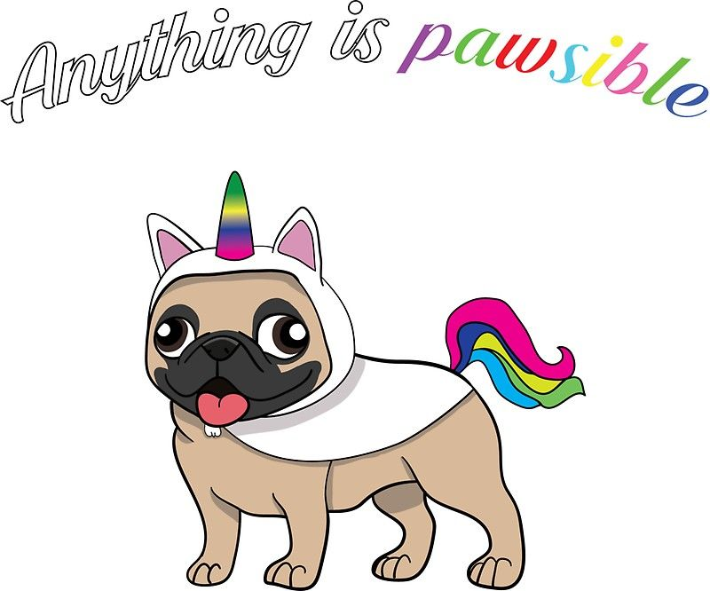 Anything Is Pawsible Funny Pug Dog Pug Unicorn Sticker