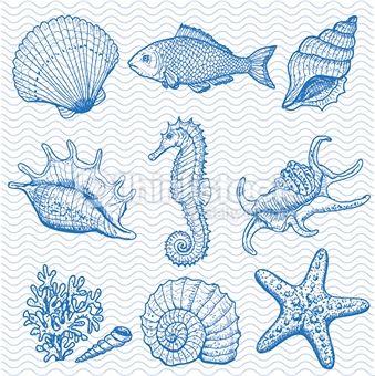 Hippocampe photos et illustrations - Images libres de droits - Thinkstock France