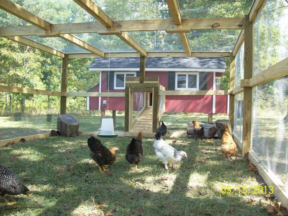 The mother of all chicken runs awesome via the chicken for Chicken run for 6 chickens
